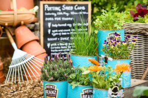 Pic credit BBC GW Spring Fair_Best Beauitful Border Patrick's Patch by Fairweathers
