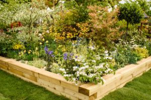 Pic credit BBC GW Spring Fair_Hillier Experience Feature Garden at the heart of the Fair